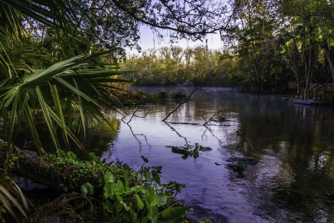 Best Hiking in Florida Wekiwa Springs