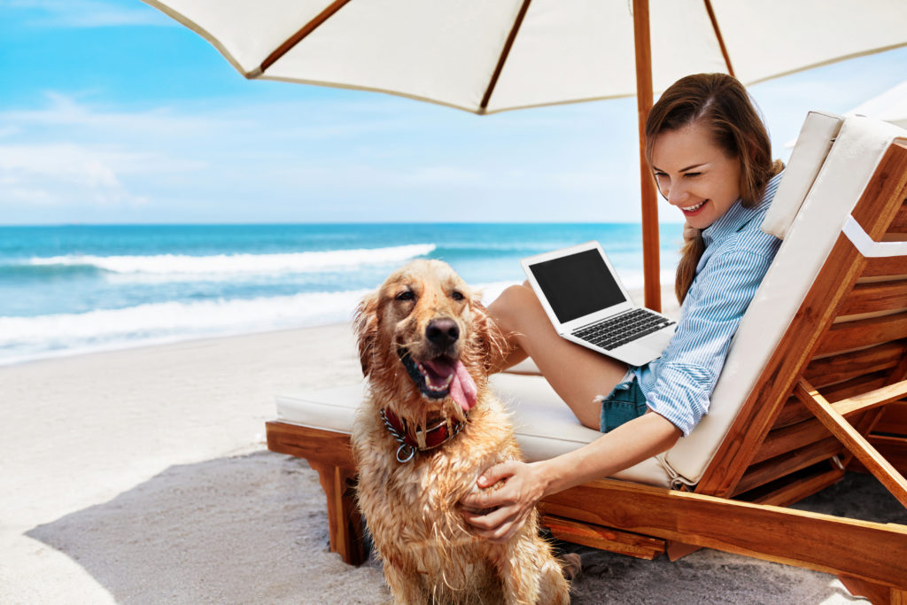 vacationing with pets