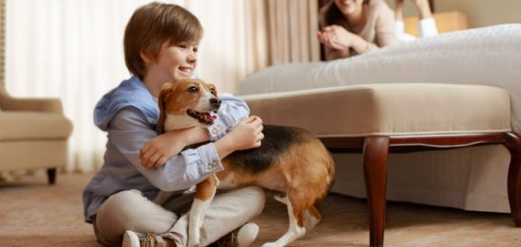 Pet Friendly Timeshares - Child Holding Dog
