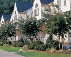 Historic Powhatan Resort  - Timeshares Only 1